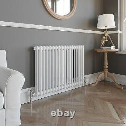Traditional Classic Colosseum Horizontal Double Bar Radiator 600 x 800mm White